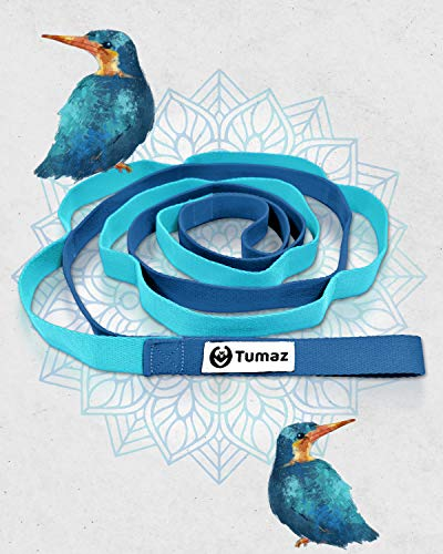 Tumaz Stretch Strap – 10 Loops & Non-Elastic Band – The Perfect Home Workout Stretching Strap for PT(Physical Therapy…