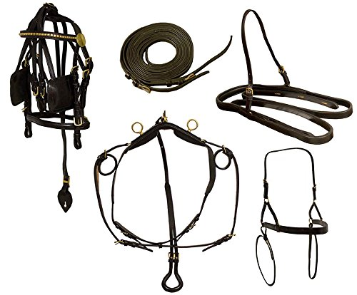 Derby Originals Mini Horse Driving Harness Premium Leather Set, Mini/Black