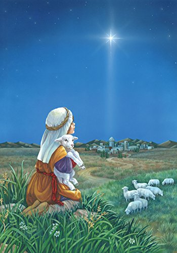 (Toland Home Garden Shepherd's Watch 12.5 x 18 Inch Decorative Sheep Field Christmas Star Jesus Birth Garden Flag -)