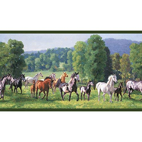 Decorate By Color BC1581827 Jewel Tone Wild Horses Wallpaper Border