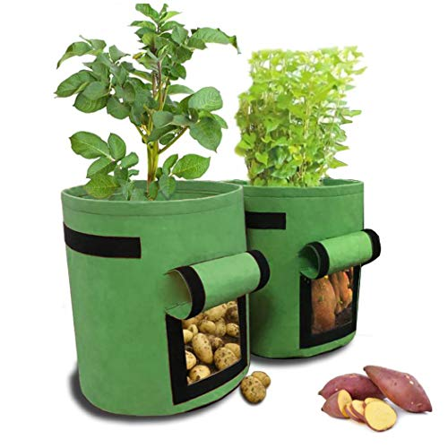 IronBuddy 2 Pack Planter Bags 7 Gallon Vegetable Plant Grow Bag with Flap, Garden Growing Container for Potato Carrots and More, ()