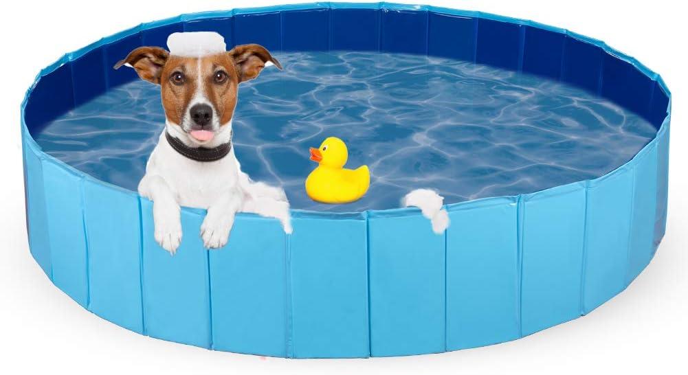 Hund Badewannen