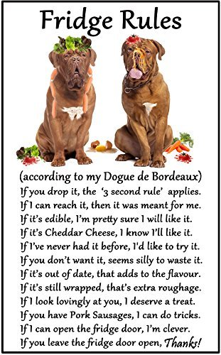 Bordeaux Outdoor Wall - hiusan Dogue De Bordeaux Gift - Fridge Rules Funny Fridge Stickers Warning Stickers Peel and Stick Kitchen Home Decor 6