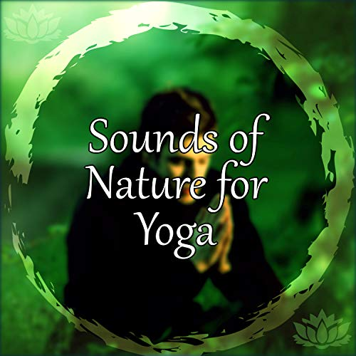 Sounds of Nature for Yoga - The Best New Age Music to Practise Yoga, Pilates, Meditation, Asian Zen, Rest, Oriental Flute, Meditation Zen, Well Being