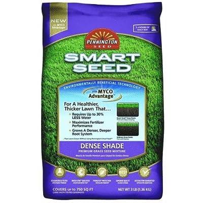 Pennington Seed #118930 3LB Dense Shade N Seed : Grass Plants : Garden & Outdoor