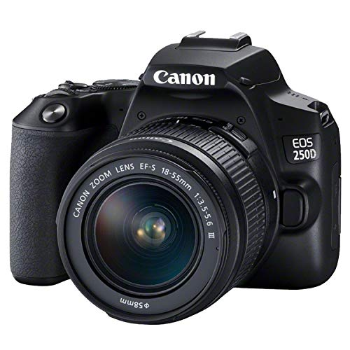 Canon EOS 250D / Rebel SL3 DSLR Camera w/ 18-55mm F/3.5-5.6 III Lens