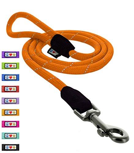 Orange 6' Dog Leash - 5