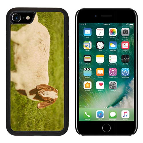 Luxlady Apple iPhone 8 Case Aluminum Backplate Bumper Snap iPhone8 Cases Image ID: 34232218 Goat on a Green Grass as Sign of 2015 Year by Chinese Calendar Vintage t