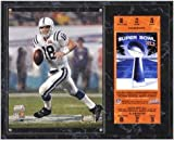 Indianapolis Colts Super Bowl XLI Peyton Manning Plaque with Replica Ticket - Fanatics Authentic Certified