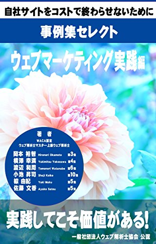(Case study collection of web analytics consultants - Selection of marketing practice (Japanese Edition))