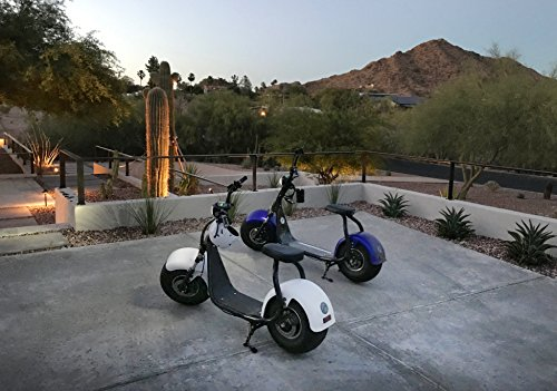 PHAT SCOOTERS - Phatty Sport Electric Scooter - Matte Black Frame - Gunmetal Fenders - Light Wood Deck by PHAT SCOOTERS (Image #5)