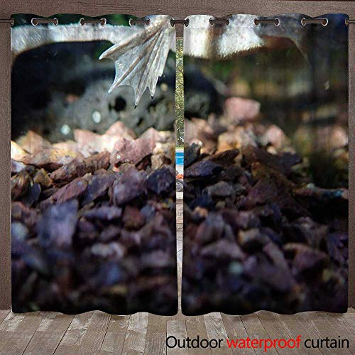 WinfreyDecor Home Patio Outdoor Curtain African Clawed Frog Claws W72 x ()