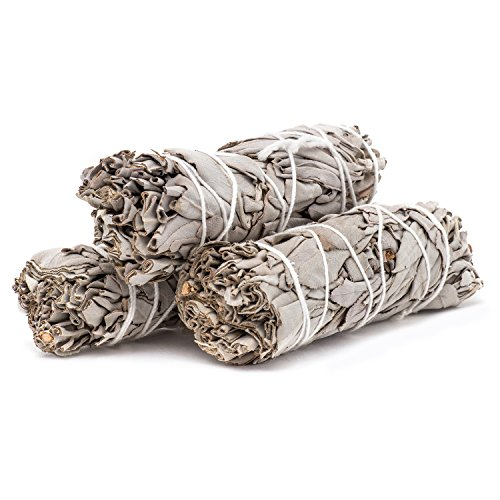 White Sage Mini Smudge Sticks-3 Pak