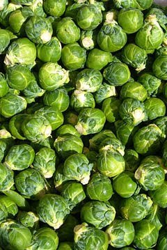 Brussels Sprouts Seeds- Half Dwarf- French- 100+ 2017 Seeds