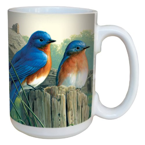 Tree-Free Greetings 79026 Morning Bluebird by James Hautman 15-Ounce Ceramic Mug with Full-Sized Handle, Multicolored