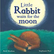 Little Rabbit Waits For the Moon (Meadowside PIC Books)