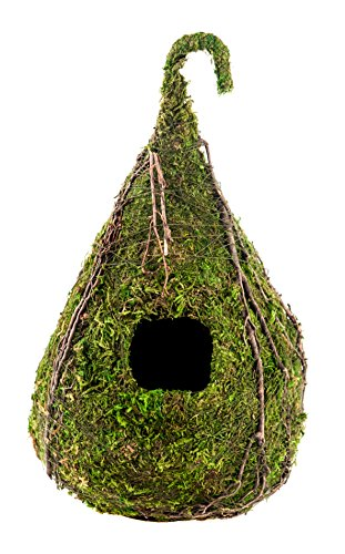 SuperMoss (56026) Raindrop Birdhouse, 6 by 10-Inch, Fresh Green - Green Birdhouse