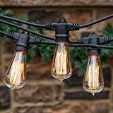 Brightech Ambience Pro Vintage Outdoor String Lights - 48 Ft Weatherproof Commercial Grade Edison Market Cafe Bistro Waterproof Light Strand for Patio Garden Porch Backyard Party Yard – Black