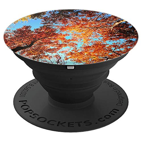 - Fall Trees Sunny Day Scene = Autumn Leaves and Sky Colors - PopSockets Grip and Stand for Phones and Tablets