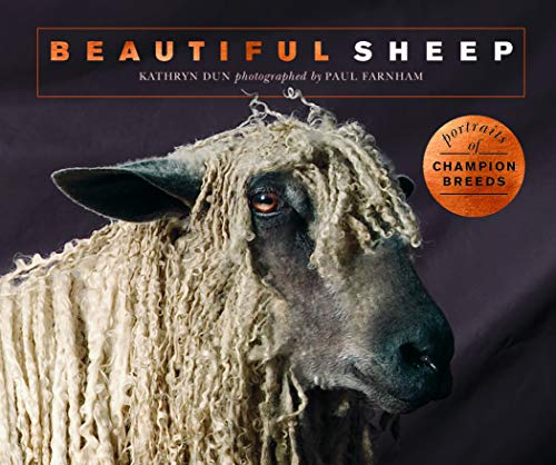 (Beautiful Sheep: Portraits of champion breeds (Beautiful Animals))