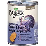 Purina Beyond Grain Free Turkey & Sweet Potato Recipe Ground Entree Adult Wet Dog Food - 13 oz. Can