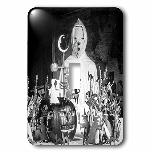 3dRose lsp_269794_1 Vintage Halloween Creepy Ghoul Wizard in His Laboratory Early 1900S Toggle Switch Multicolor ()