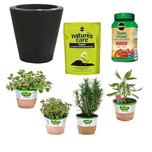 Bonnie Plants Outdoor Self-Watering Grillers Garden