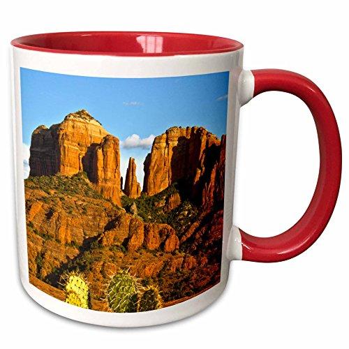 (3dRose Danita Delimont - Cactus - Cathedral Rock at Sunset, Prickly Pear Cactus, Sedona, Arizona, USA - 15oz Two-Tone Red Mug (mug_210333_10))