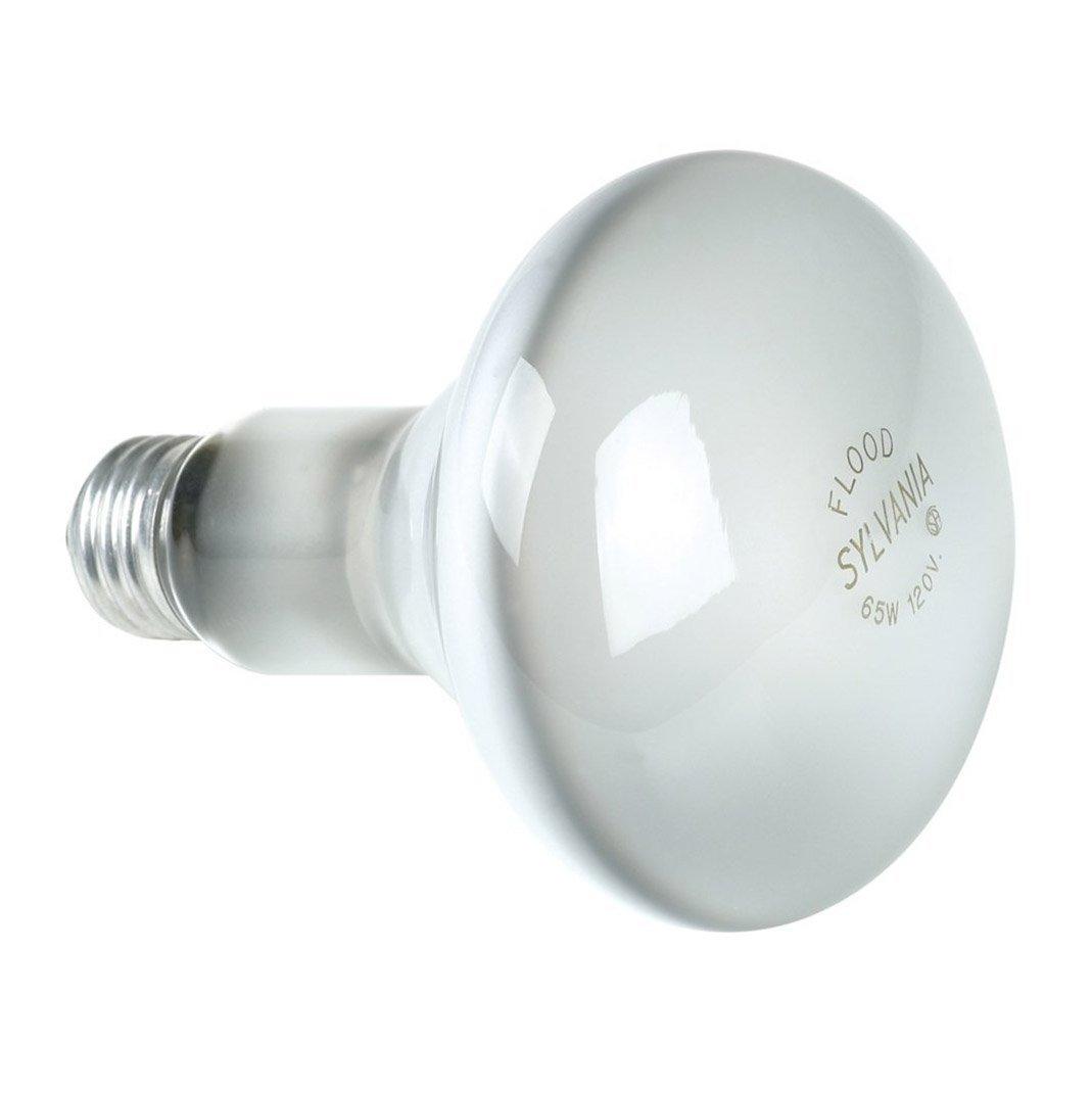 Sylvania lighting br30 65w 120 volt indoor flood bulb 1 pack sylvania lighting br30 65w 120 volt indoor flood bulb 1 pack amazon arubaitofo Choice Image