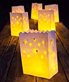 Frux Luminary Bags - 24 - Safe for indoor and outdoor use - Perfect to use with our flameless candles and tea lights