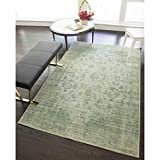 Rugs America RA25385 Power Loomed Area Rug, 5 x 8-ft 0 Green Review