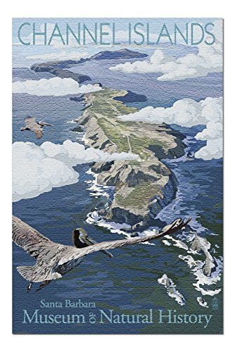 Channel Islands, California - Museum of Natural History - Bird's Eye View (20x30 Premium 1000 Piece Jigsaw Puzzle, Made in USA!)