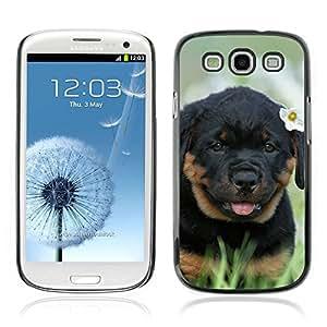 Carcasa Funda Case // V0000804 Dog Puppy Pattern // Samsung Galaxy S3 i9300