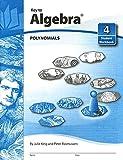 Key To Algebra Book 4: Polynomials (KEY TO...WORKBOOKS)