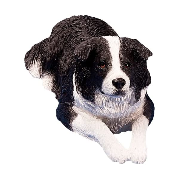 Sandicast Original Size Black and White Border Collie Sculpture, Lying 1