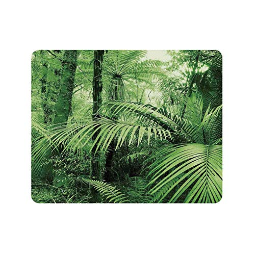 Rainforest Decorations Durable Rectangle Mousepad,Palm Trees and Exotic Plants in Tropical Jungle Wild Nature Zen Theme Illustration for Company,9.84