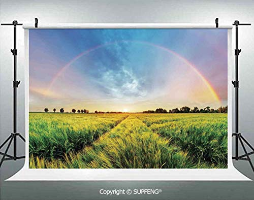 Photography Backdrops Rainbow in Sky Over Wheat Field at Sunset Natural Paradise Rural Life Illustration 3D Backdrops for Photography Backdrop Photo Background Studio - Bamboo Curtain Wheat