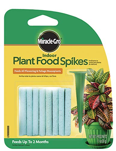 Miracle-Gro 1002522 Indoor Plant Food Spikes, Includes 24 Spikes-Continuous Feeding for All Flowering and Foliage Houseplants-NPK 6-12-6