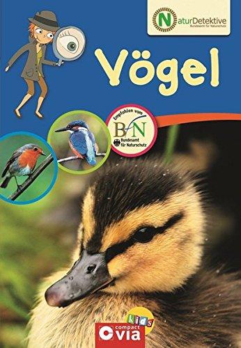 Naturdetektive Vögel