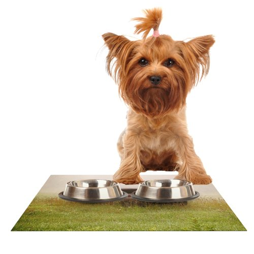Kess InHouse Angie Turner Forgotten Car  Grass Feeding Mat for Pet Bowl, 18 by 13