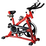 Homgrace Exercise Bike Indoor Cycle Bike, Indoor Bike Trainer (Red)