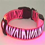 Feng The Zebra style Flashing led dog collar(Assorted Sizes,Colors)