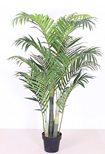 Tropical Plant Nursery (AMERIQUE Gorgeous 5' Tropical Tree Artificial Silk Plant, with Nursery Plastic Pot, Feel Real Super Quality, Palm Green)