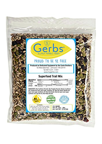 1 Lb Peanut Flour - Super 10 Food Snack Mix, 1 LB Bag - Food Allergy Safe & Non GMO -Vegan & Kosher - Packaged at Gerbs in USA