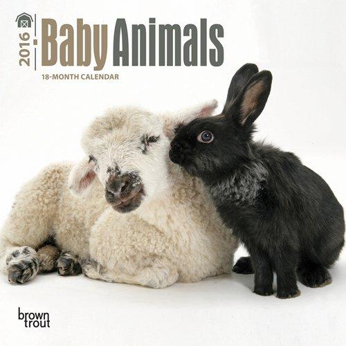 Baby Animals 2016 Mini 7x7 PDF