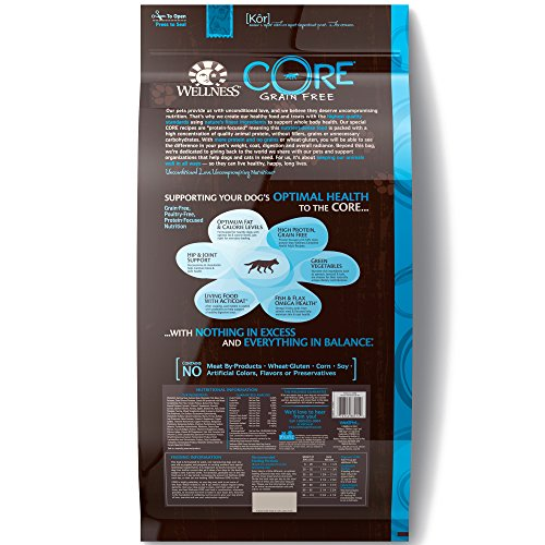 Wellness Core Natural Grain-Free Dry Dog Food, Ocean Whitefish, Herring & Salmon, 26-Pound Bag by WELLNESS CORE (Image #1)
