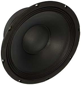 "Amazon.com: Seismic Audio - 10"" Raw Woofer/Speaker PRO"