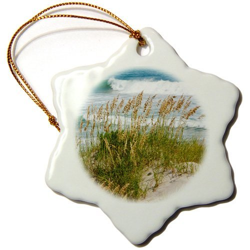 Wild Bramble 3 Inch Porcelain Snowflake Decorative Hanging Ornament  Sea Oats On Sand Dune  Outer Banks  North Carolina  Atlantic Ocean
