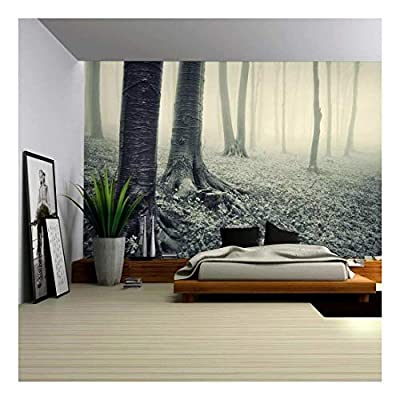 Incredible Expertise, it is good, Vintage Like Mural of a Mysterious Forest Wall Mural