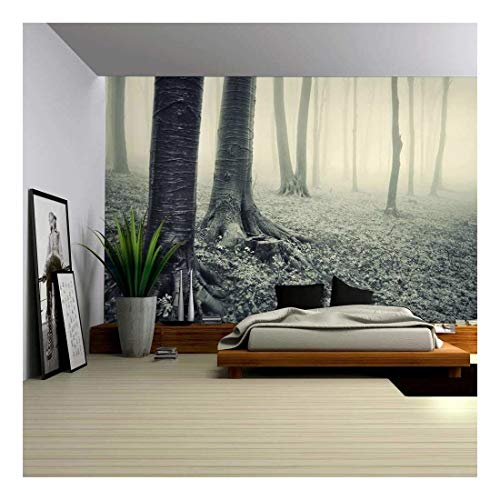 Vintage Like Mural of a Mysterious Forest Wall Mural